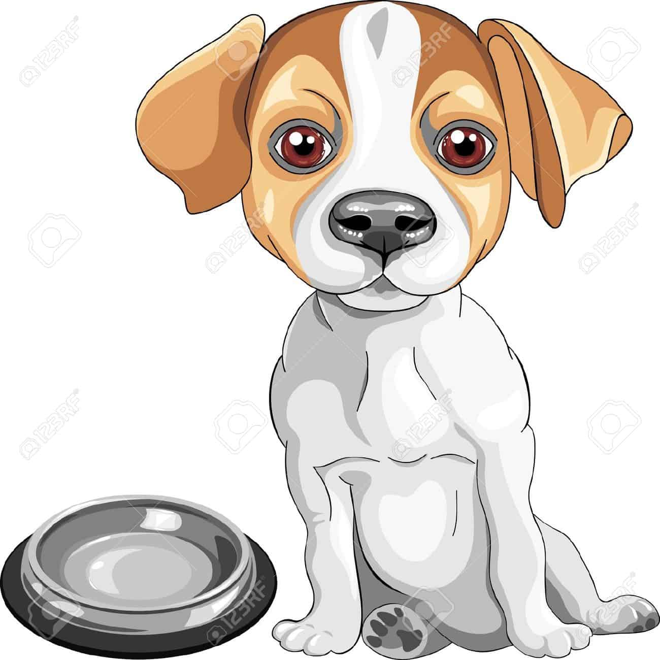 13894870-color-sketch-of-the-dog-Jack-Russell-Terrier-breed-sits-in-front--Stock-Photo